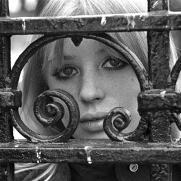Marianne Faithfull in 1972